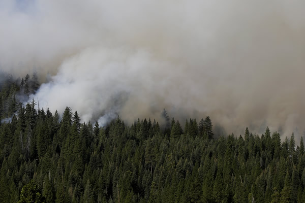 "<div class=""meta ""><span class=""caption-text "">A smoke rises from the Rim Fire near Yosemite National Park, Calif., on Sunday, Aug. 25, 2013. With winds gusting to 50 mph on Sierra mountain ridges and flames jumping from treetop to treetop, hundreds of firefighters have been deployed to protect this and other communities in the path of the Rim Fire raging north of Yosemite National Park. (AP Photo/Jae C. Hong)</span></div>"