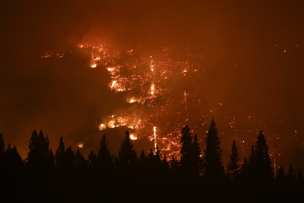 A forest smolders as the Rim Fire continues to burn near Yosemite National Park, Calif., on Saturday, Aug. 24, 2013. Fire crews are clearing brush and setting sprinklers to protect two groves of giant sequoias as a massive week-old wildfire rages along the remote northwest edge of Yosemite National Park. (AP Photo/Jae C. Hong)