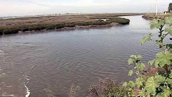 Feinstein marks end of wetlands restoration project