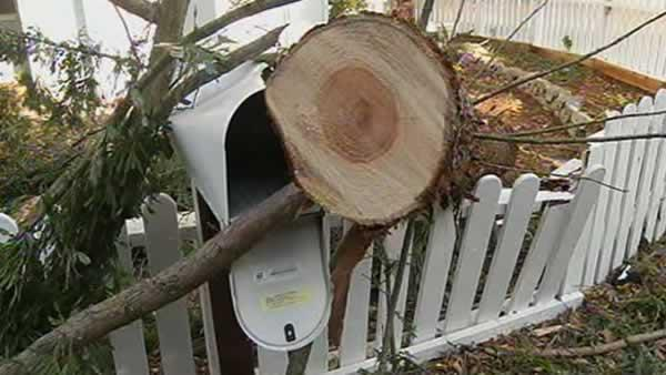 Crews cleanup from wind storm