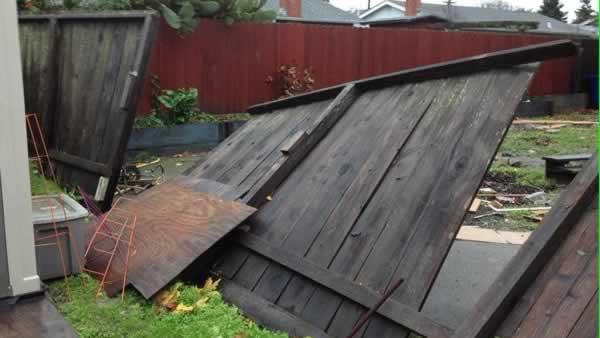 Fence down in Petaluma
