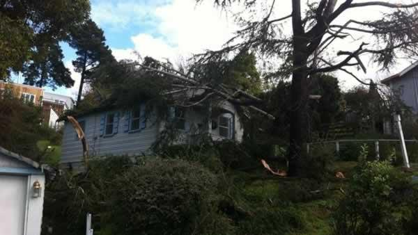 Storm damage in El Cerrito