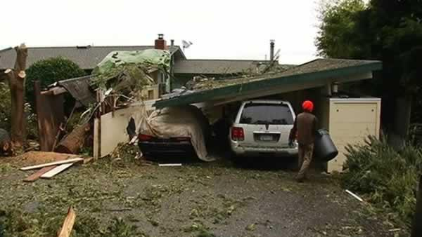Storm-toppled tree crushes carport and cars in Inverness.