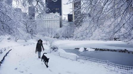 2014 in New York. Yet another winter storm brought snow and ice to the