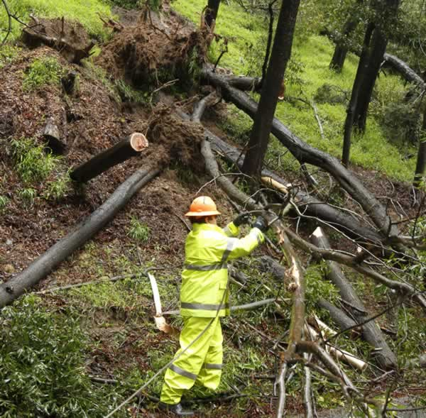 A worker clears fallen trees from a rain soaked hillside on Park Boulevard Thursday, March 24, 2011, in Oakland, Calif. This is the second storm of the week to sweep down from Alaska, and it's lived up to predictions that it would pound the region hard. (AP Photo/Ben Margot)