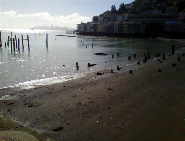 Storm spotted from Sausalito. (Photo submitted by Sara Hydestate via uReport)