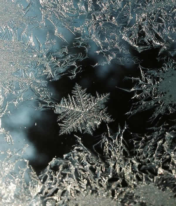 &#34;This was my windshield the other day in Rohnert Park.&#34; <span class=meta>(Submitted by Regina Veri-Pawlak via Facebook)</span>