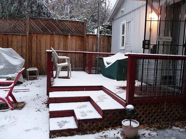 Photo taken during rare snow day in Ukiah, Calif. on Dec 6, 2013 <span class=meta>(Submitted by anonymous user via uReport)</span>