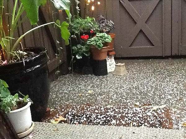 "<div class=""meta ""><span class=""caption-text "">Hail passed through Walnut Creek on Saturday (Photo submitted by Mila Fairfax via uReport) </span></div>"