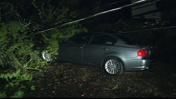 Rains were intense enough to bring down a tree in the Oakland Hills  - happened around 8pm.  The tree came down taking some power lines with it - no injuries reported &#40;April 12th&#41;.   <span class=meta>(KGO)</span>