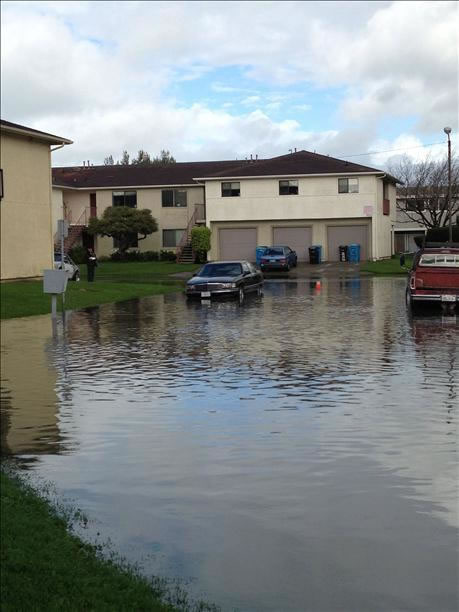 "Flooding on Treasure Island (Photo submitted by ""Wulf"" via uReport)"