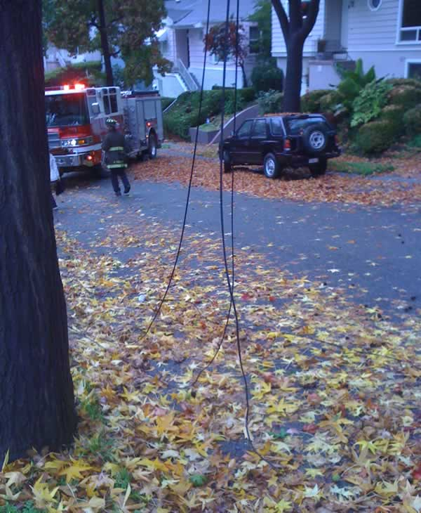 "<div class=""meta image-caption""><div class=""origin-logo origin-image ""><span></span></div><span class=""caption-text"">Windy conditions damaged trees and power lines at 171 Marlow Drive in Oakland over the weekend. (Photo submitted by Gregory Schwartz) (KGO)</span></div>"