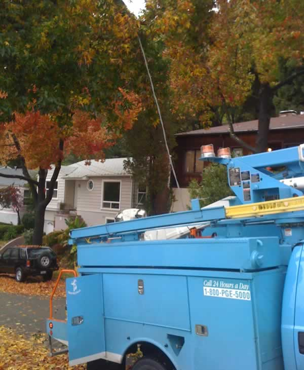 "<div class=""meta ""><span class=""caption-text "">Windy conditions damaged trees and power lines at 171 Marlow Drive in Oakland over the weekend. (Photo submitted by Gregory Schwartz) (KGO)</span></div>"