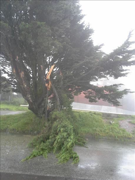 Stormy weather on Twin Peaks in San Francisco (Photo submitted by Robin S. via uReport)