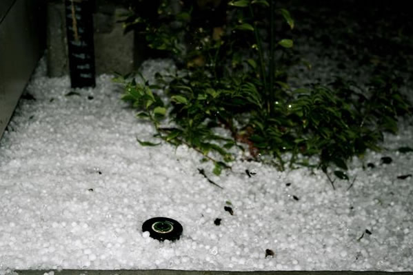 Hailing in Albany, CA on March 18, 2011 :) (Photo submitted by Hang Thu Mosier via uReport)