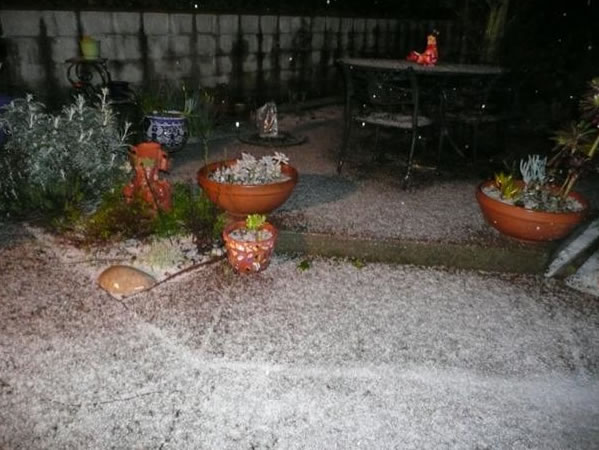 Here is a photo of the hailstone accumulation earlier this evening at our home in Orinda. (Photo submitted by Olga Tapiap via uReport)