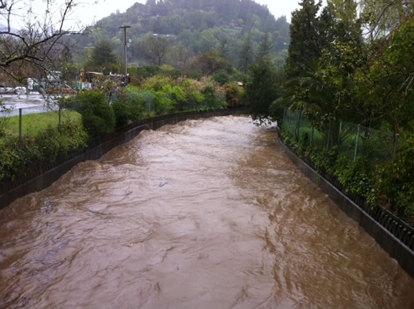 Creek view from College of Marin, March 24, 2011 (Photo submitted via uReport)
