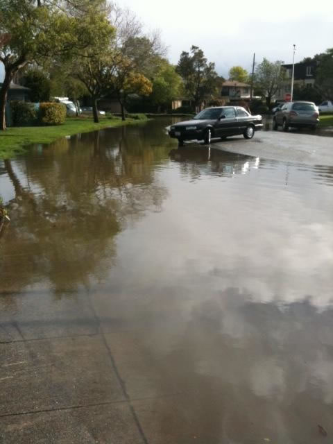 Flooding on Lago Street in San Mateo, March 24, 2011 (Photo submitted via uReport)