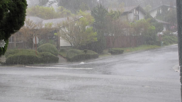 Heavy rain falls on Simas Avenue in Pinole Valley (Photo submitted by user Gloria Crim via uReport)