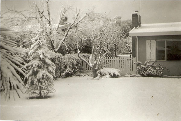 Historical photo: Snow in Palo Alto, January 1962 (Photo submitted by John Spence via uReport)