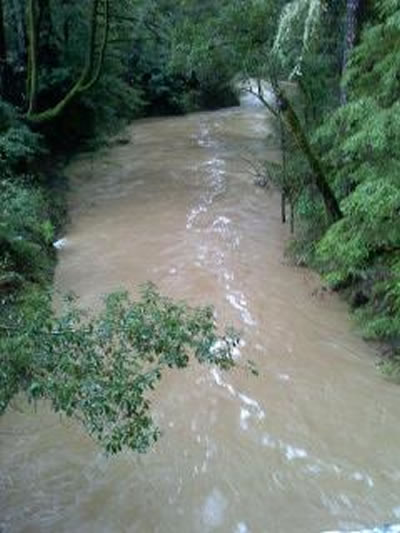 "<div class=""meta ""><span class=""caption-text "">Flooding at San Lorenzo River near Boulder Creek, March 24, 2011 (Photo submitted by user mwwade via uReport)</span></div>"