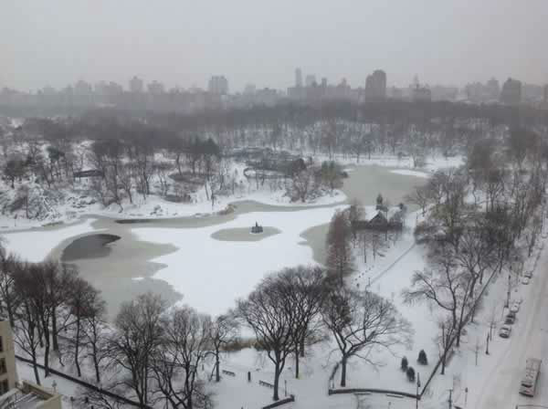 Beautiful Central Park. (Photo submitted by Luz R. via Facebook)