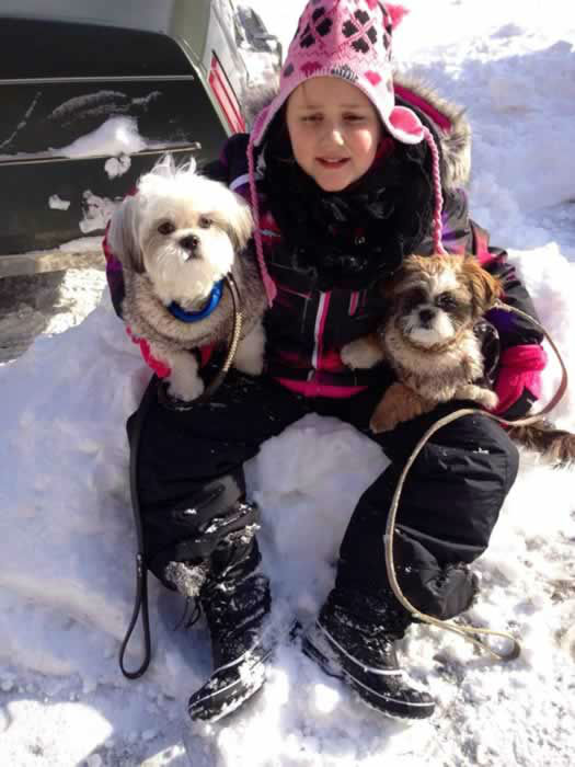 Santino Nikki and Rocky enjoying the snow. (Photo submitted by Lisa P. via Facebook)
