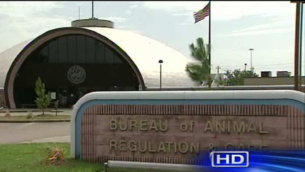 Concerns mount over animal treatment at BARC