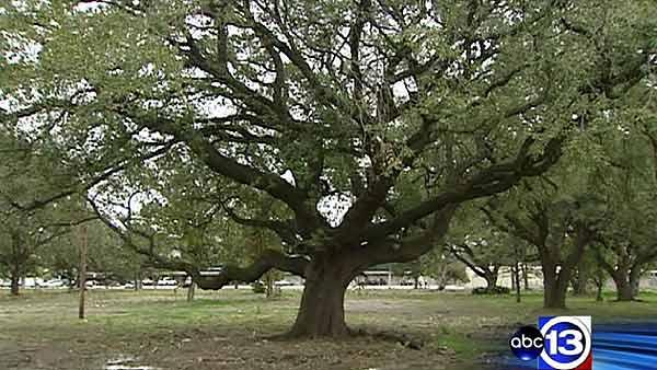 Residents want to preserve green space