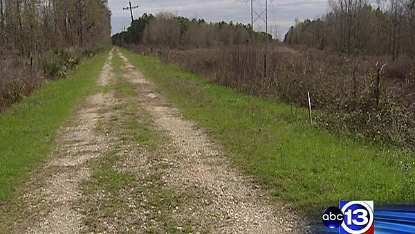 Liberty Co. resident battles over pipeline land grab