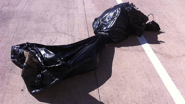Stolen rugs left dumped in trash bag