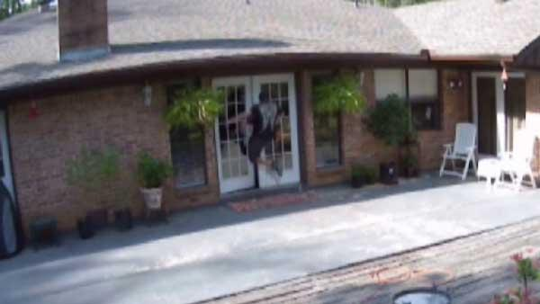 Deputies: Video captures brazen daytime burglary