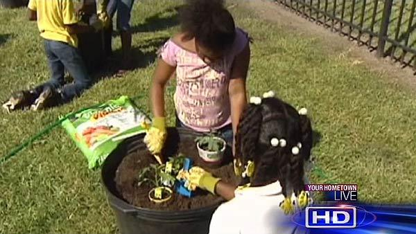 Gardens bloom from Love Your Block program