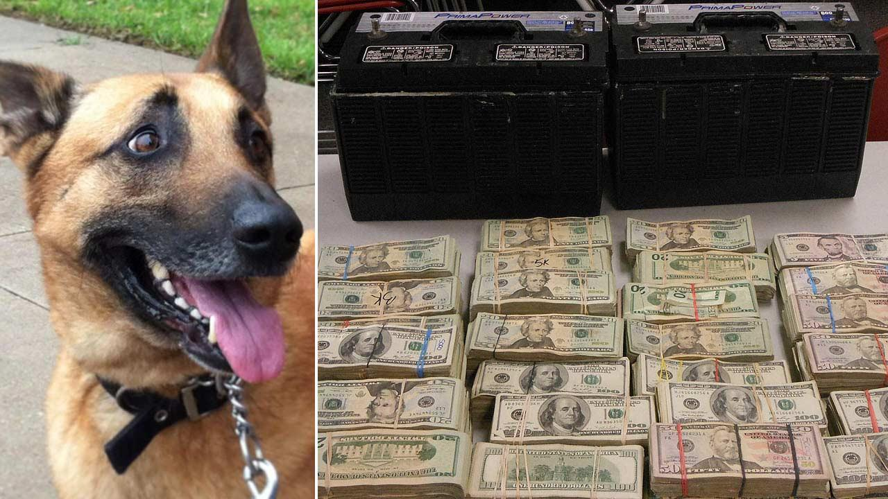Drug agents, with help from K-9 'Deputy Mike,' seize more than $230,000 during traffic stop along Highway 59 near Rosenberg