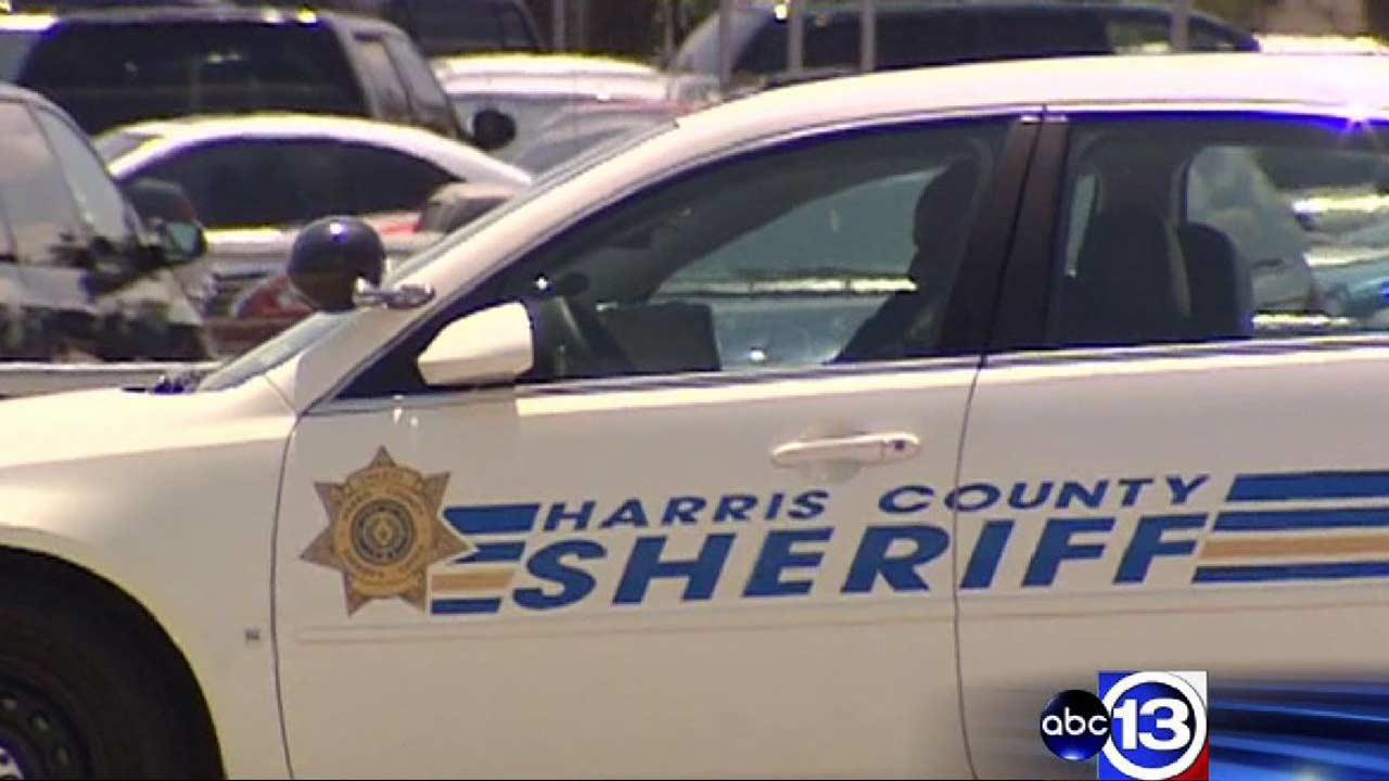 Task force launched to fight crime in east Harris County a success so far, officials say
