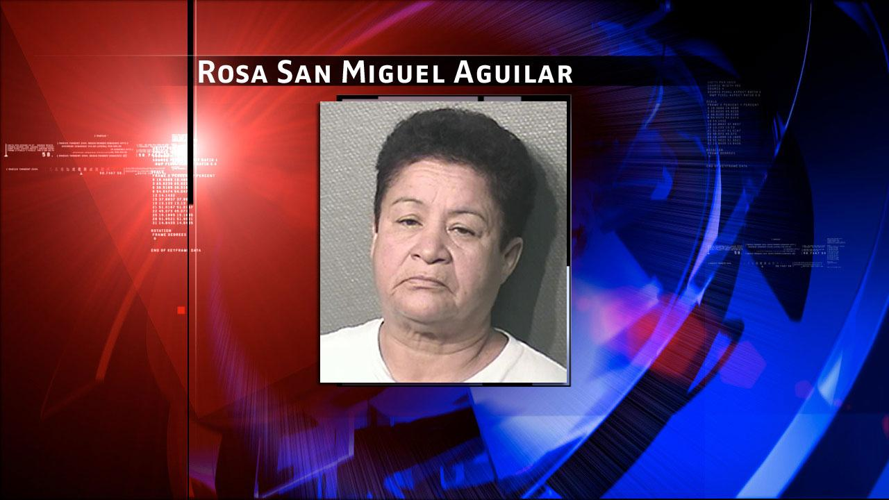 Rosa San Miguel Aguilar