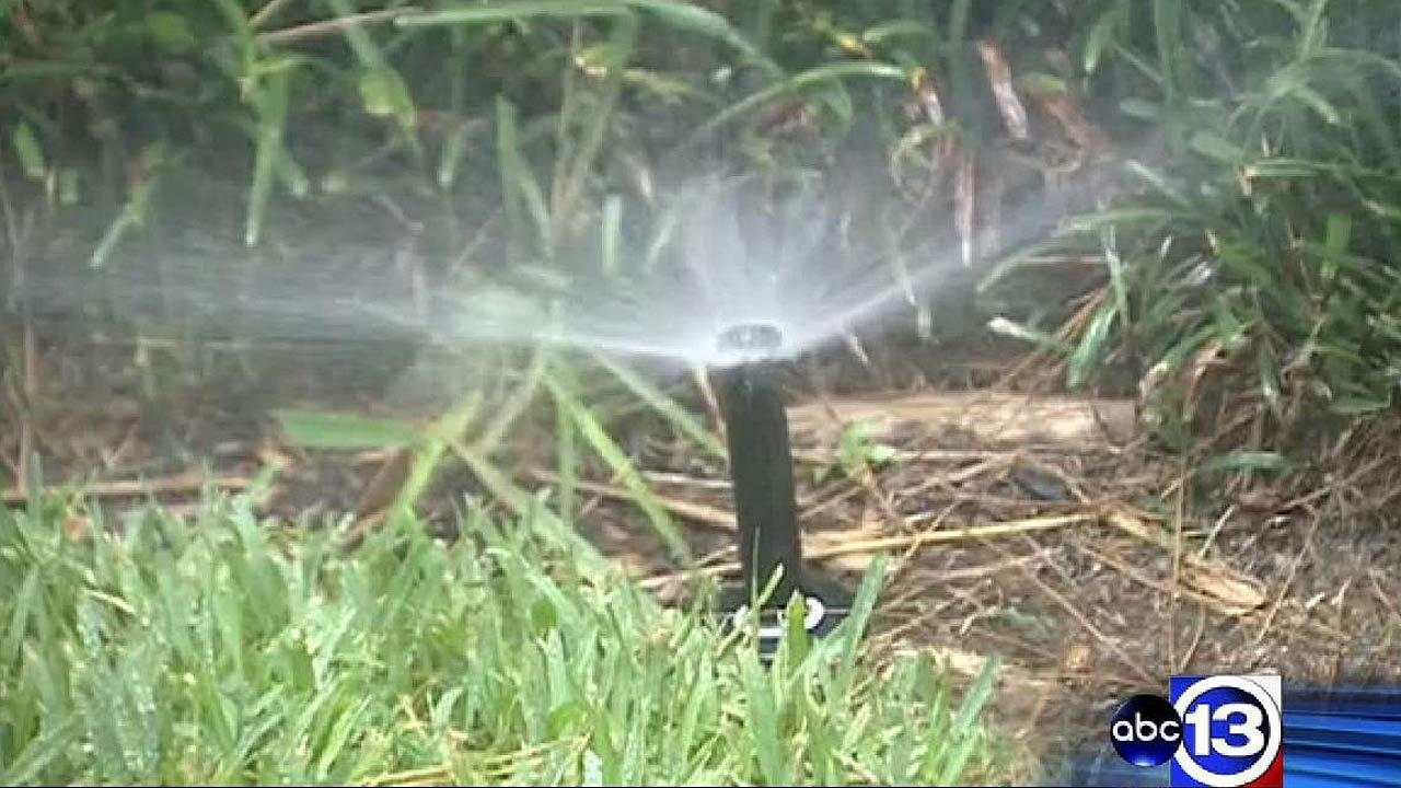 New rules for watering lawns in The Woodlands