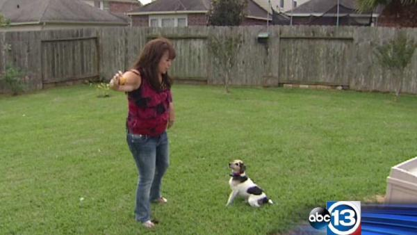 Woman gets $207 ticket for dog's barking