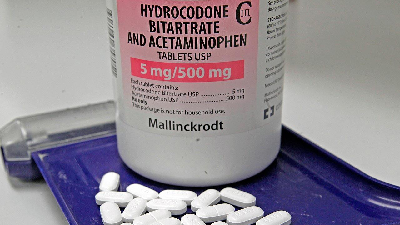 Hydrocodone painkillers