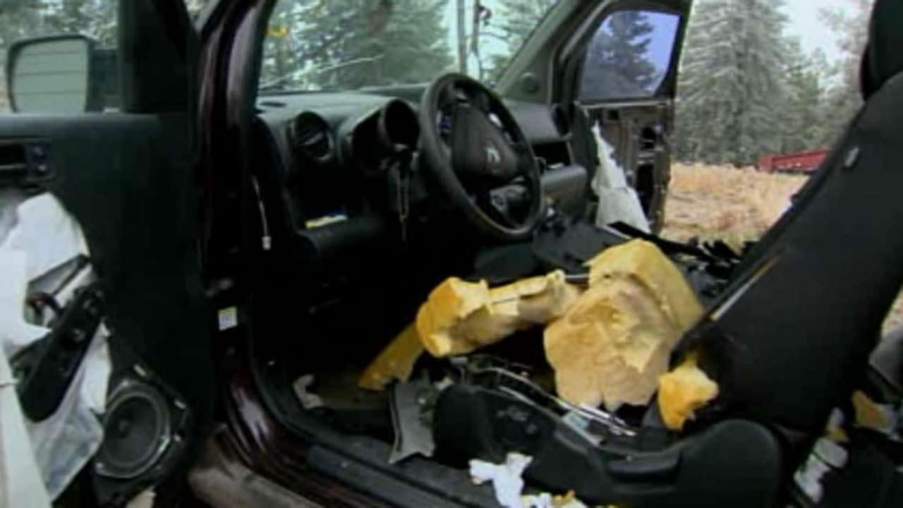 Bears break into car in Colorado, tear up interior