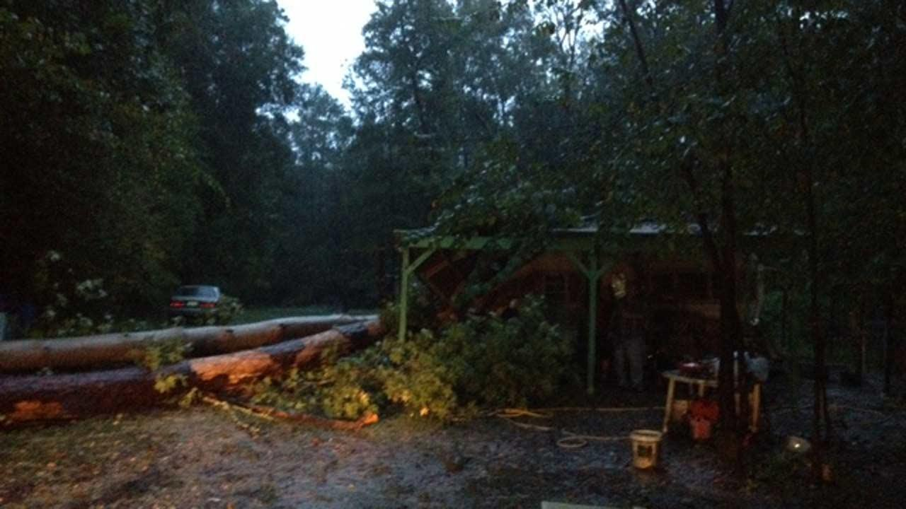 A couple of trees fell on top of a trailer home in northeast Harris County <span class=meta>(ABC13&#47;Crystal Kobza)</span>