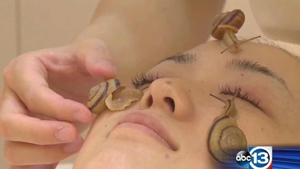 Is snail slime the next big thing in skincare?