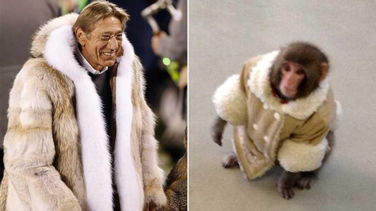 Joe Namath vs. Ikea monkey