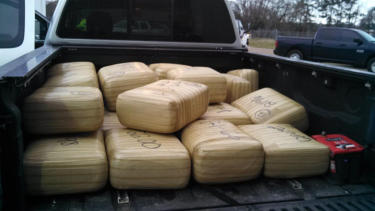 Drug dog finds 600 pound of pot in pickup truck during traffic stop in Montgomery County