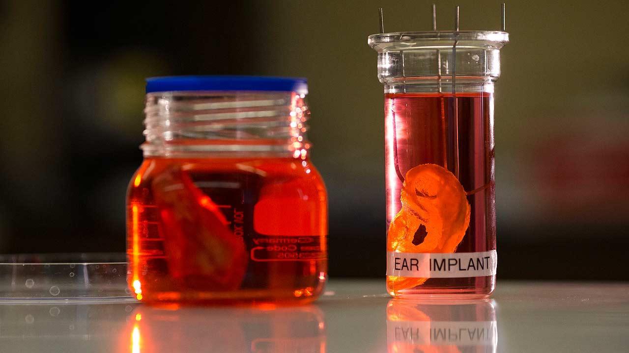 Lab organs