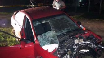 Joy ride ends in fatal crash