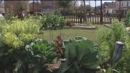 Neighbors forced to pull up community garden