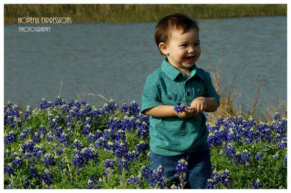 ABC13 viewers sent in photos of this year&#39;s bluebonnets! You can email your photos&#47;videos to news@abc13.com. <span class=meta>(KTRK Photo)</span>