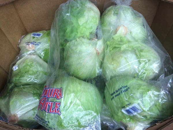 "<div class=""meta image-caption""><div class=""origin-logo origin-image ""><span></span></div><span class=""caption-text"">SKIP: LETTUCE It's hard for most families to go through three heads of lettuce before it goes bad. (KTRK Photo)</span></div>"