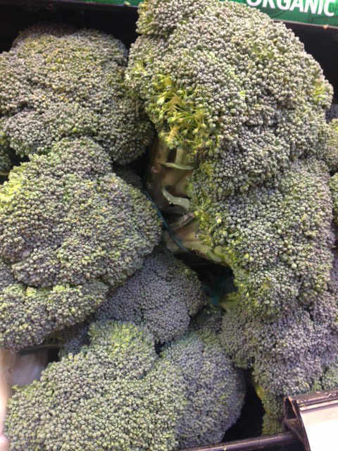 "<div class=""meta ""><span class=""caption-text "">AVOID: Broccoli (KTRK Photo)</span></div>"
